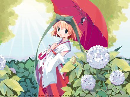 Фото Рыжая девочка в костюме японской жрицы с зонтом стоит среди кустов гортензии