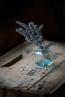 Фото Лаванда в баночке на столе, by Krystal Thompson Photography