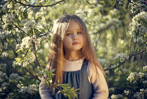 Фото Девочка у цветущего весеннего дерева, фотограф Valeriya Tikhonova