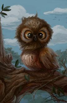 Фото Смешной птенец совы на дереве, by MariaRRobina