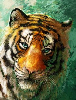 Фото Тигр на зеленом фоне, by FleetingEmber