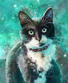 Фото Кошка на зеленом фоне, by FleetingEmber