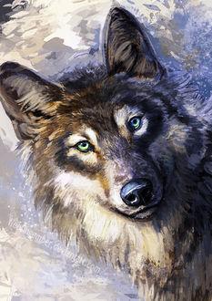 Фото Рисованный волк, by FleetingEmber