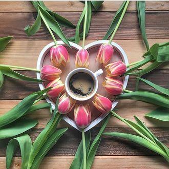 Фото Розовые тюльпаны выложены вокруг чашки с кофе