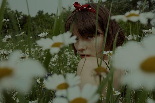 Фото Девушка сидит в ромашках, by Marta Bevacqua