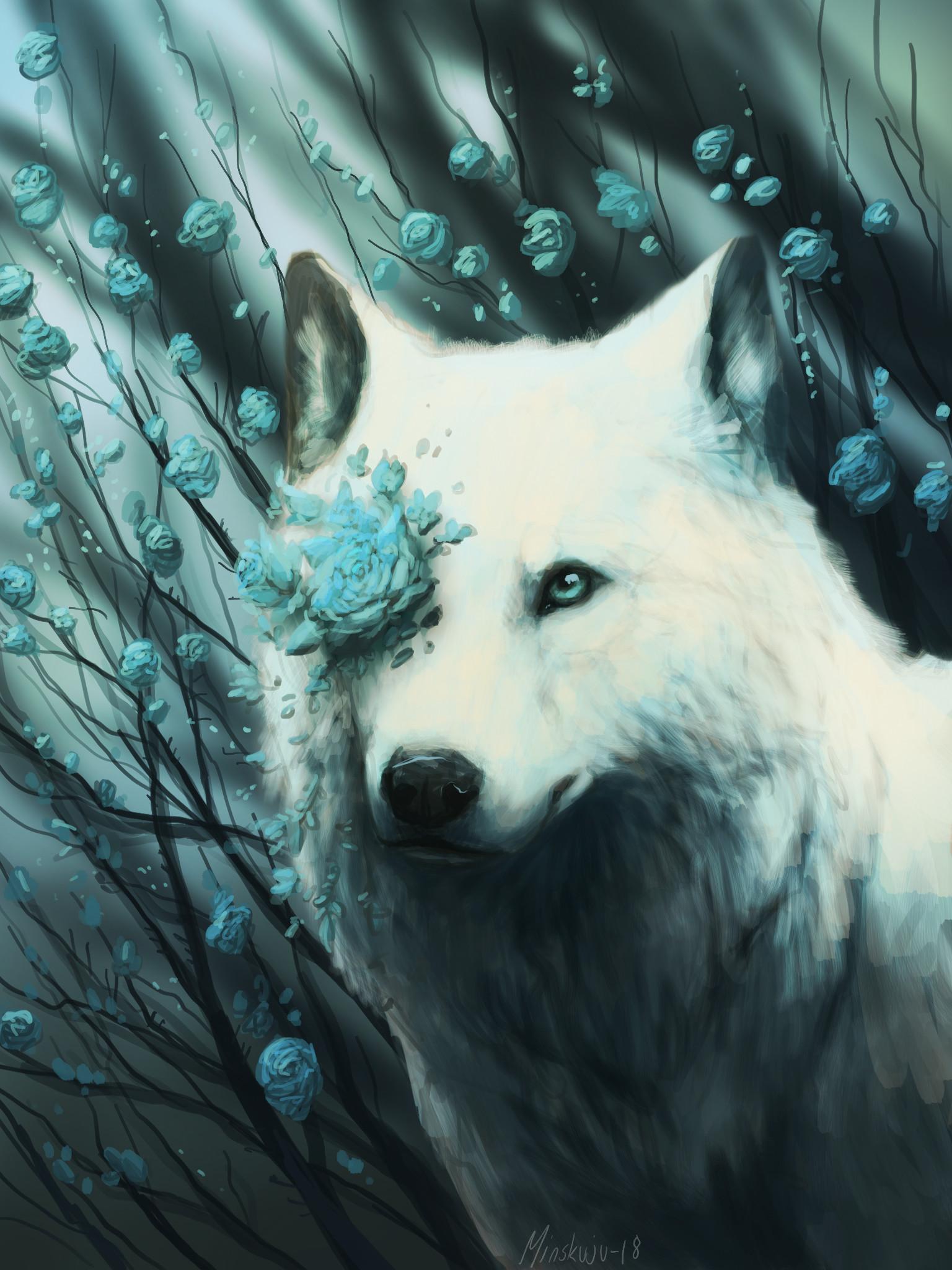 Белый волк картинки арт, картинках для