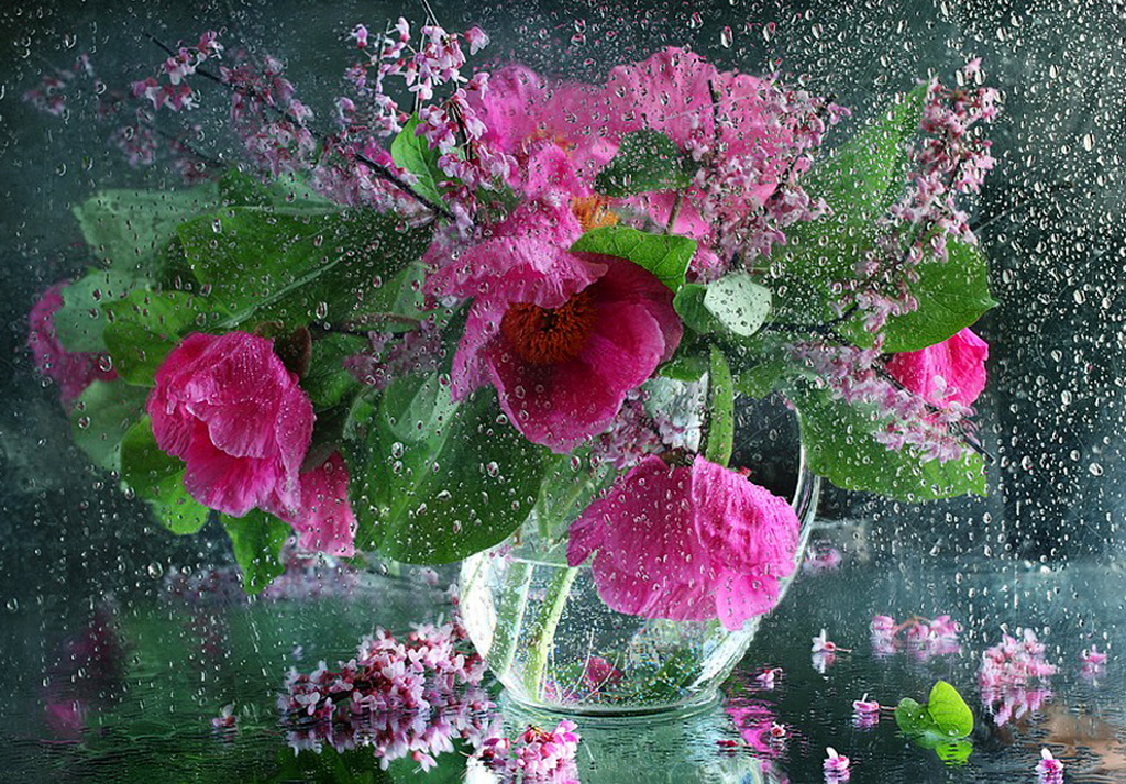 Букет розовых цветов в стеклянной вазе осыпается под теплым дождем