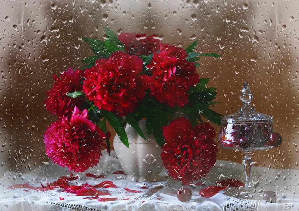 Букет ярко- алых роз в фарфоровой вазе