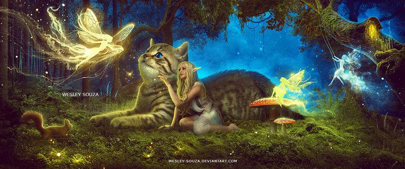 Фото Девушка-эльф сидит у огромного кота в сказочном лесу, by Wesley-Souza
