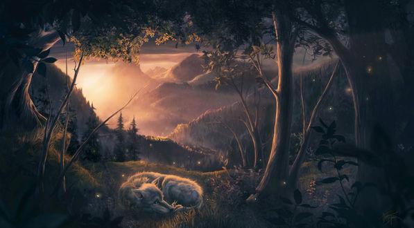 Фото Волк лежит рядом с белкой на земле, by Marie Beschorner