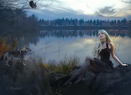 Фото Девушка в черной одежде сидит на камнях у водоема, на нее смотрит волк