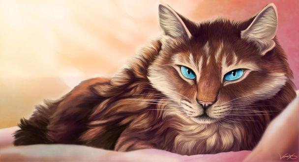 Фото Голубоглазая полосатая кошка, by Golphee