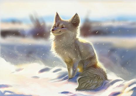 Фото Довольный песец под падающим снегом, by TehChan