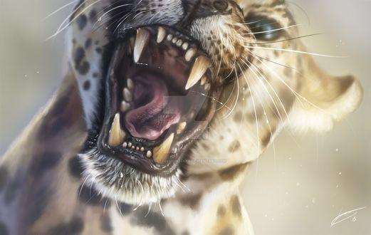 Фото Леопард с открытой пастью, by XxBattleLionessxX