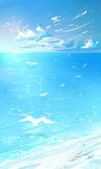 Фото Чайки парят над морем