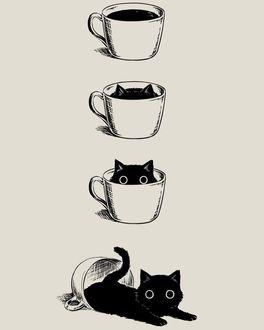 Фото Черный котенок в чашке