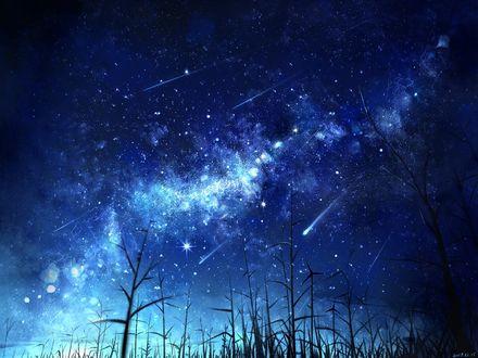 Фото Высокая трава, деревья и ветряки на фоне ночного неба, падающих звезд и млечного пути