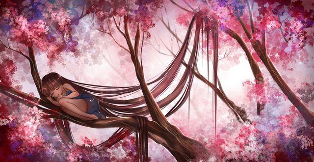Фото Девушка с длинными каштановыми волосами спит на ветке цветущей вишни, by Izunichi