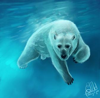 Фото Белый медведь под водой, by DreamDragonHatchling