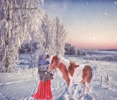 Фото В заснеженном лесу, девочка стоит с лошадкой