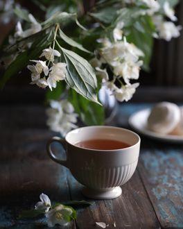 Фото Чай в чашке и ветка жасмина в вазе на столе