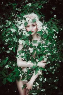 Фото Девушка стоит у цветущего куста жасмина. Фотограф Светлана Беляева