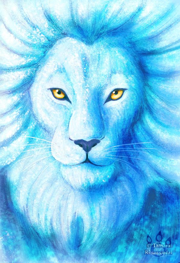 Фото Желтоглазый и белоснежный лев, by tamaraR