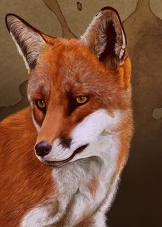 Фото Портрет лисицы на коричневом фоне, by petanimalia