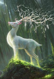 Фото Белый олень гордо стоит на возвышенности, by G-host Lee