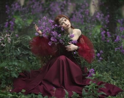 Фото Девушка в бордовом платье с полевыми цветами в руках. Фотограф Margarita Kareva