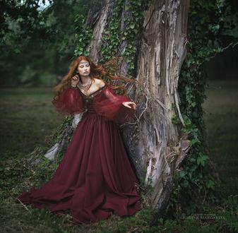 Фото Девушка в бордовом платье стоит у дерева. Фотограф Margarita Kareva