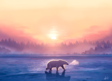 Фото Идущий по снегу полярный белый медведь на фоне заката, by Atropicus