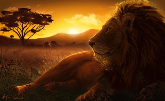 Фото Лежащий на земле лев на фоне заката, by Atropicus