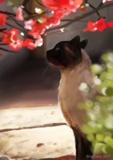 Фото Сиамская кошка под ветками дерева с красными цветами на нем, за зеленым кустом, by BingTatsu