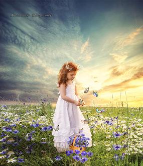 Фото Девочка на цветочной поляне держит ромашку в руке, в окружении бабочек
