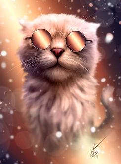 Фото Кот в очках, by Gergo Hizsnyik