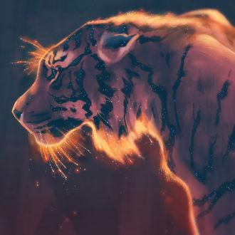 Фото Рисованный тигр в профиль, by TamberElla
