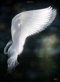 Фото Девушка-ангел на фоне боке, by Develv