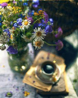 Фото Букет полевых цветов с ромашками в банке рядом с чашкой кофе на блюдце, by Татьяна Миронова