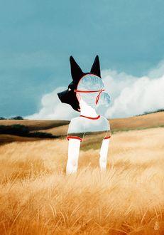 Фото Полупрозрачная девушка в маске Анубиса стоит в поле, by Jenna Barton