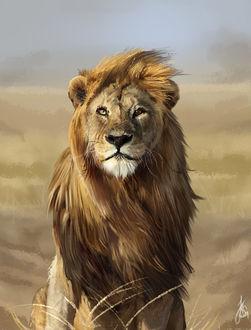 Фото Лев на фоне природы, by Ssphynx