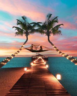 Фото Влюбленные на гамаке между пальмами