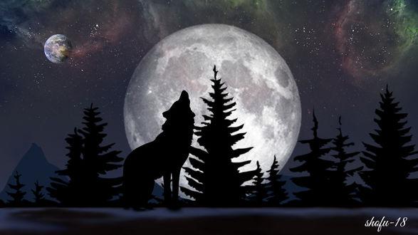 Фото Волк на фоне полной луны, by Shariful Alam