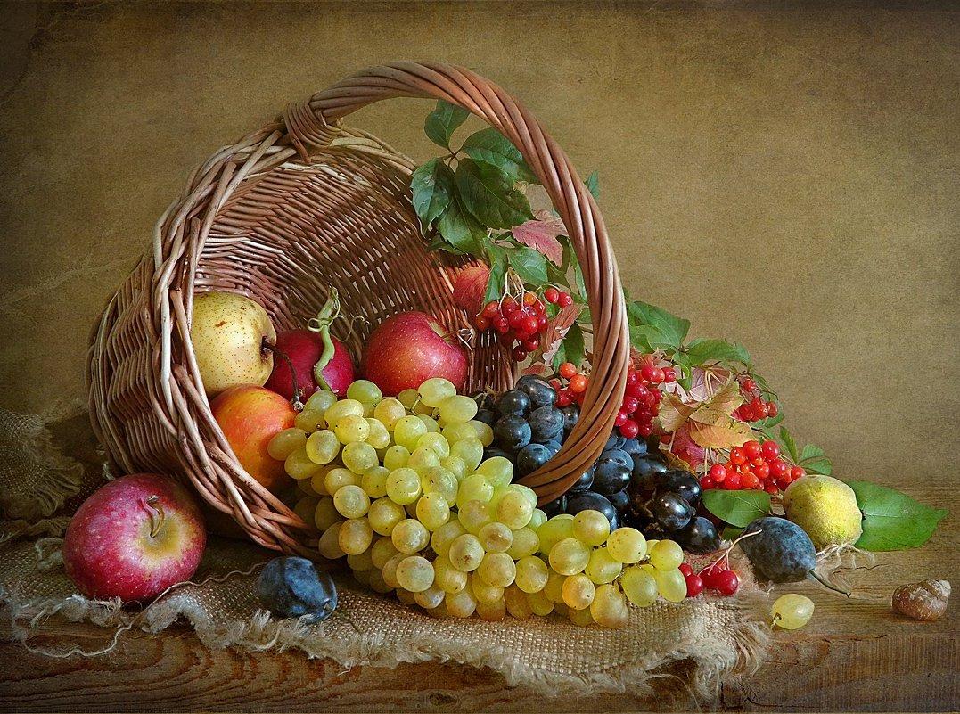картинки фрукты натюрморт время носительницы