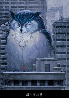 Фото Двушка в красном плаще стоит на крыше здания перед огромной совой с кулоном на шее