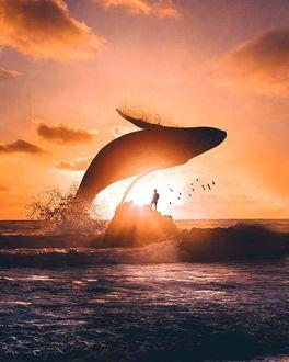 Фото Парень стоит на камне, окруженном морем и перед ним выпрыгнувший кит, by Ronald Ong