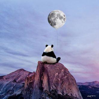 Фото Панда сидит на вершине горы и держит в лапах шарик, by karencantuq