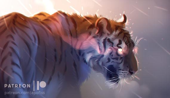 Фото Тигр с огненными глазами под дождем, by Apofiss