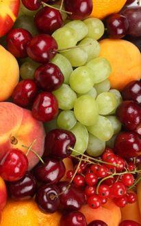 Фото Спелые фрукты-абрикосы, смородина, вишни, виноград