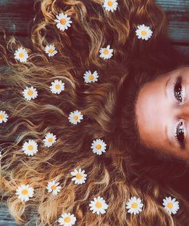 Фото Ромашки на волосах девушки, by _photobylotte